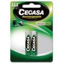 piles rechargeables Ni-MH AAA/HR03
